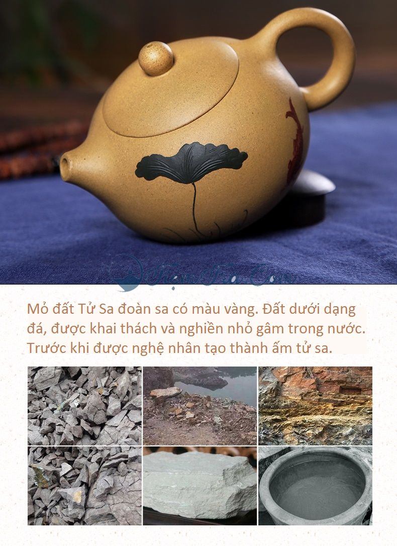 m Tử Sa Tây Hoàng Kim Sen Cá 1 9 - Ấm Tử Sa Tây Hoàng Kim Sen Cá