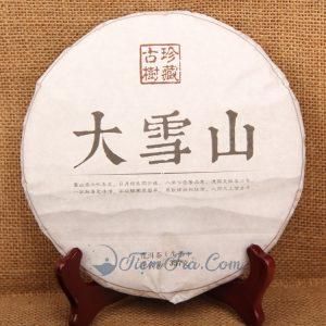 tra pho nhi tuyet san 300x300 - Trà Shan Tuyết phổ nhĩ 357g